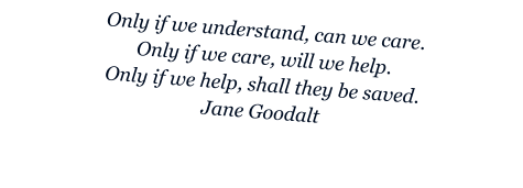 Only if we understand, can we care. Only if we care, will we help. Only if we help, shall they be saved. Jane Goodalt