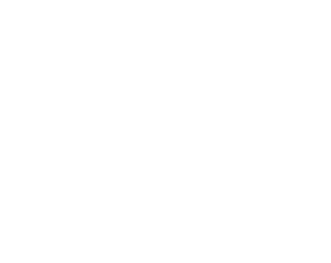 For supporting our  animal rescue projects  in India we also offer exclusive  textile articles!